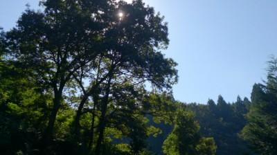 壱の井の朝 秋空